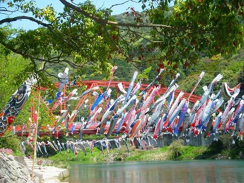 佐賀・川上渓谷鯉のぼり